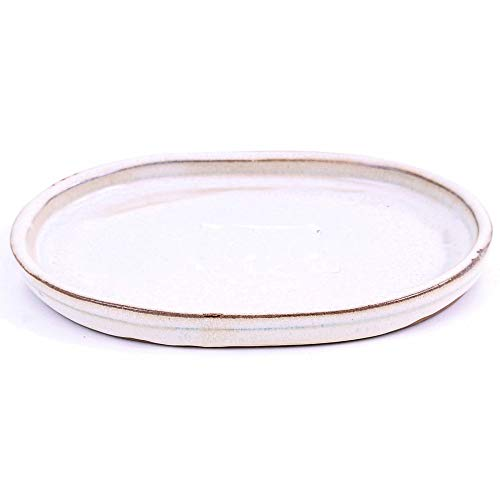 Bonsai - Untersetzer oval 17 x 13 cm, Creme 54341