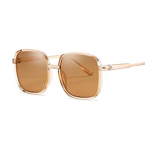 IRCATH Gafas de Sol cuadradas de Moda para Mujer Gafas de Sol para Femenino Marco Grande Color de Jalea Transparente Vintage Rosa Negro Adecuado para la conducción de la Playa y Senderismo-marrón