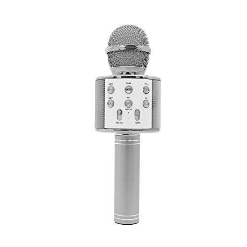 Hubbering - Micrófono inalámbrico Bluetooth para karaoke para los jóvenes en el corazón, accesorio de YouTuber con múltiples funciones, incluyendo reverberación de eco