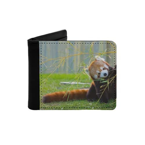 Cartera Delgada de Cuero para Hombre,El Panda Rojo o Panda Menor,Cartera Minimalista con Bolsillo Frontal Plegable