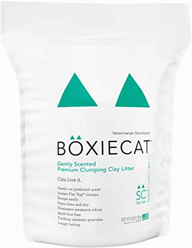 Boxiecat Gently Scented Premium Clumping Clay Cat Litter, 16 lb, Gently Scented - 16 lb