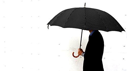 CLASSICO(クラシコ)『高級紳士傘』