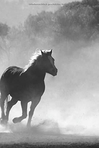 Notizbuch Pferd für Reiter: Tagebuch mit Pferde Motiv - für Pferdefreunde und Leute mit dem Pferd als Krafttier