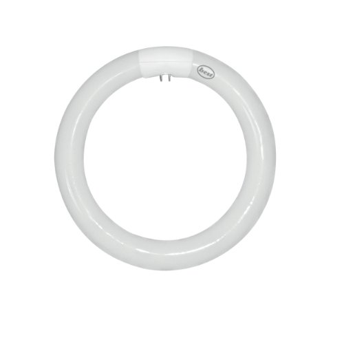 Bulk Hardware - Tubo fluorescente circular (T9CL, 22 W, 4 pines, 210 mm)