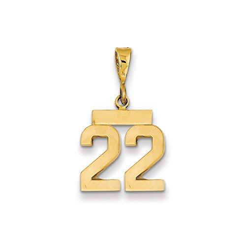 Saris and Things 14k Oro Amarillo Pulido pequeño número 22 Charm