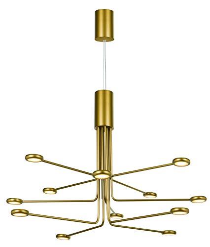 Lampara Colgante de techo Led, Decorativo de aluminio acabado oro mate mate, estilo moderno y elegante. Altura ajustable