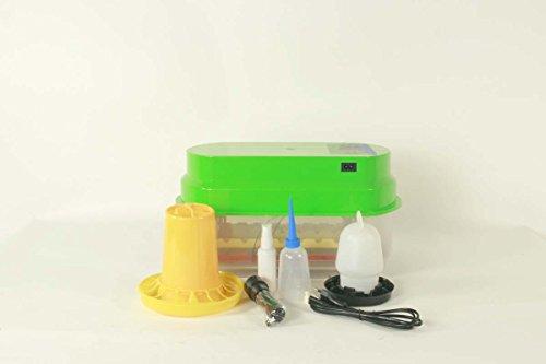Inkubator VOLLAUTOMATISCH BK15ProQ für 42 Wachtel, Tauben, Fasanen inkl. Zubehör, Brutautomat, Brutmaschine dt. Anleitung