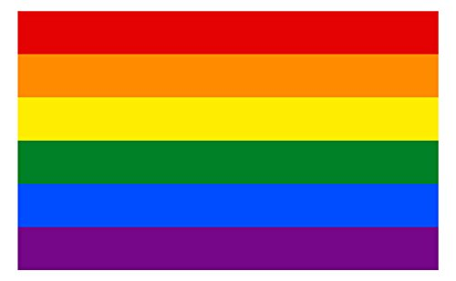 Applicable Pun Pride Flag - Gay Lesbian Bisexual Transgender LGBT Rights Unity Love Support Pride Symbol - Vibrant Color Vinyl Decal (12' Wide)
