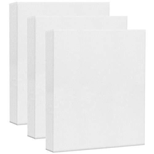 AvoDovA 3PCS Lienzos para Pintar, Lienzos Enmarcados, Artista Lienzo en Blanco para Pintura al óleo Acrílica, Lienzo Estirado Panel de Lona, Paneles de Lienzo para Pintar, Lienzo Bastidor (25 * 30cm)