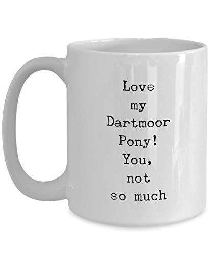 Dartmoor große Kaffeetasse mit Pony-Pferd-Motiv, Geschenkidee für Frauen, Schuhe, verwandte Knebel, Mitteiler, Lehrer, Tierärzte, Rennen