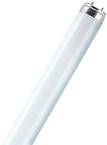 Leuchtstofflampe L 16 Watt 840 neutralweiß - Osram