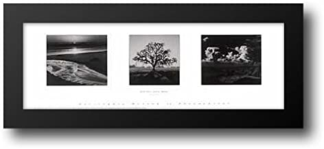 Trilogy 40x16 Framed Art Print by Adams, Ansel