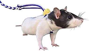 iGotRats Adjustable Rat Leash | Harness for Rats and Hamsters (Blue)