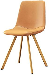 GWW Chair Dining Chair, Makeup Chair, Modern Leisure Side Chairs, Ergonomic Backrest with Iron Legs, for Cafe Dressing Room Kitchen Office Balcony Conference