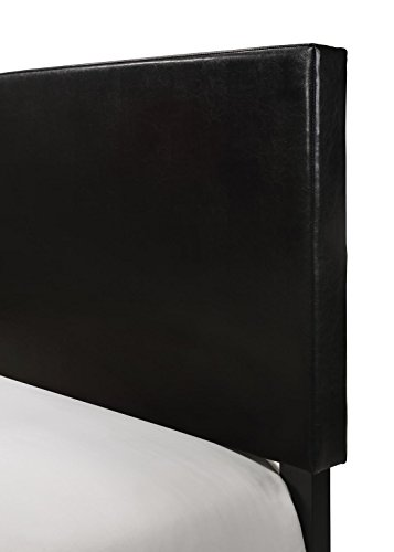 Crown Mark Erin Upholstered Panel Bed in Black, Twin