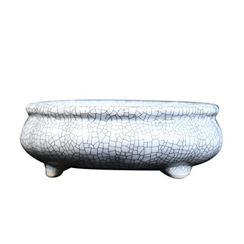 Loriver Celadon Ligh Jade Macetero Rectangular con Esquinas Redondas y esmaltado Mame Bonsai 10,3x7,9x4,3 cm