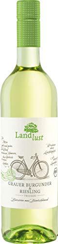 Landlust Bio Grauburgunder Riesling Qualitätswein (1 x 0.75 l)
