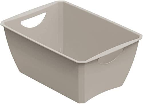 Rotho Lounge Aufbewahrungskorb 5l, Kunststoff (PP recycelt) BPA-frei, beige, 5l (30,0 x 20,0 x 14,0 cm)