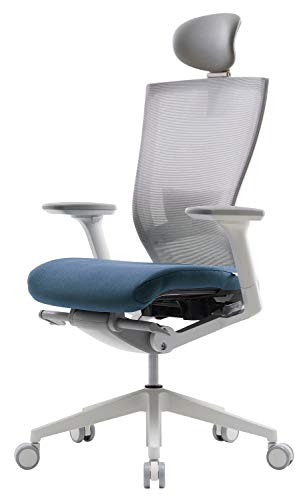 SIDIZ T50 Highly Adjustable Ergonomic Office Chair (TNB500HLDA): Advanced Mechanism for Customization/Extreme Comfort, Headrest, Ventilated Mesh Back, Lumbar Support, 3D Arms, Seat Slide/Slope (Blue)