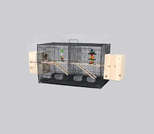 Space- rack Z-W-Dong Animaux Noir Elevage Boîtes, Fer Forgé Résistance à la Corrosion Rust Cages Parrot Métal Cages 2 Tailles Oiseaux/Cages à Oiseaux (Color : B, Size : 60 * 41 * 42CM)