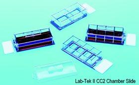 2021new shipping free Lab-Tek II CC2 Slide 4 PK Chamber Trays Discount mail order 48 6