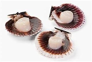 SCALLOPS WET HALF SHELL-FROZEN , Fresh & Soft Scallops , Delicious Tender & Juicy , Salty Mild & Sweet Sea Taste , Light B...