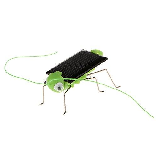 Gadget D'énergie Solaire Sauterelle Jouet Scientifique Jeux Éducatifs Électroniques Cadeau Enfant