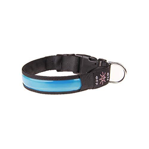 UNSKAM Leuchthalsband für Hunde Aufladbar LED Hundehalsband Blinkende Lichter mit USB Leuchtendes Hundehalsband Blinklichthalsband für Kleine Mittlere und GroßE Hunde
