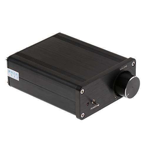 D DOLITY Amplificateur Audio 2 Canaux de Classe D Tension De DC20V à DC32V