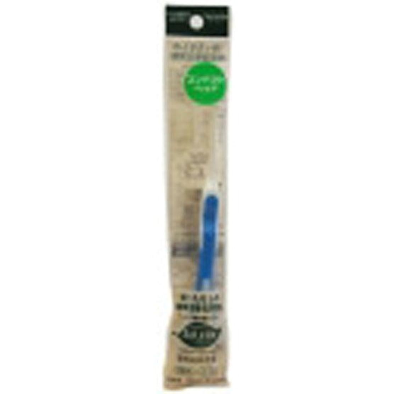 スポーツピジン拡散するサレド ヘッド交換式歯ブラシ お試しセット コンパクトヘッド ブルー