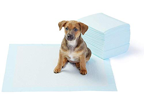 Options Puppy Pad