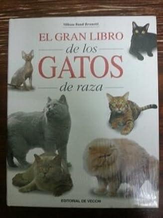 Amazon.es: gatos band: Libros