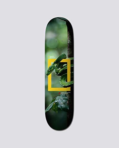 Element Skateboard Deck Nat Geo Julian Snake 8.25