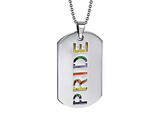 PAURO 2PCS Pride Rainbow Dog Tag LGBT Stainless Steel Jewelry - Gay and Lesbian Pride Pendant Necklace
