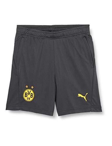 PUMA BVB Training Shorts Jr Pockets with Zippers, Asphalt-Cyber Yellow, 140