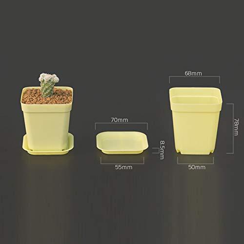 NA Vase Jardin Pots en Plastique Pots De Fleurs + Plateau en Plastique Vase Carré Fleur Bonsaï Planteur Pépinière Pots 7 Couleur Jardin Fournitures Jaune