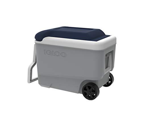 IGLOO Maxcold 100 Nevera, Outdoor, Gris, 95 Liters