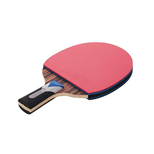 Review Ping Pong Paddle Table Tennis Racket Ebony Intermediate and Advanced Racket Game Straight Sho...