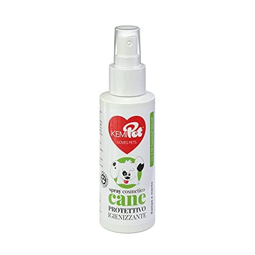 KEMIPOL Spray limpiador de patas y moro, para perros, no agresivo, 100 ml, sin aclarado, aceites esenciales de árbol de té, citronela y albahaca y clavel, clínicamente probado