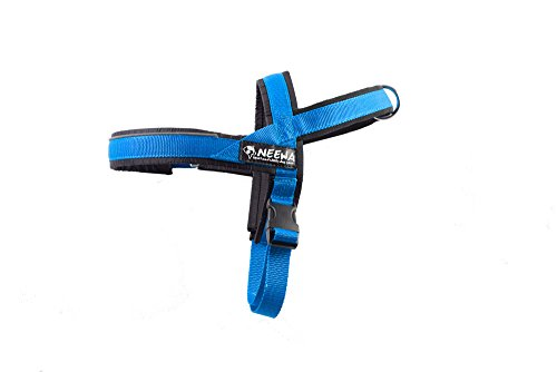 Neewa Sport servies, blauw, small, 8033087538298