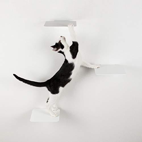 LucyBalu Katzentreppe Steps 3er Set I Individuelle Kletterwand für Katzen bis 10 kg I Kletterstufen mit 18 x 18 cm je Stufe (Weiß ohne Korkauflagen)