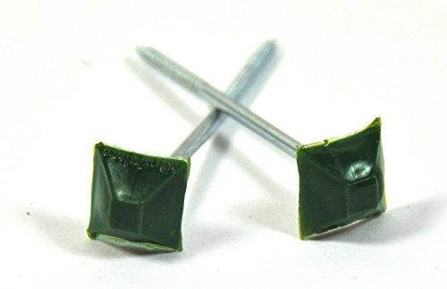 Dachnägel Nägel für Bitumenwellplatte Wellplatten Kunststoffkopf Nagel eckig grün, Stück:500