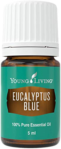 Eucalyptus Blue Essential Oil 5ml by Young Living Essential Oils