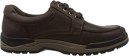 Mephisto CHARLES GRIZZLY 151 DARK BROWN, Derbies à lacets hommes - Marron - Braun (GRIZZLY 151), Taille 43 EU