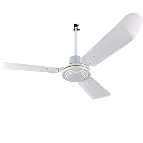 Ventilateurs de plafond Blanc Grand Ventilateur De Volume D'air Métal Courbé 56 Pouces Grand Diamètre Longue Durée Moteur De Qualité Xuan - worth having