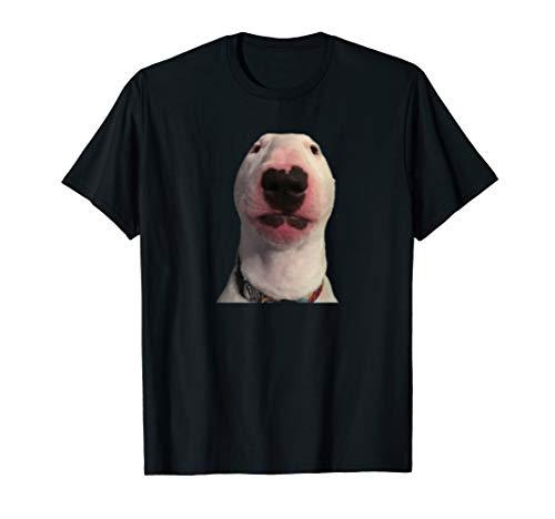 Walter dog T-Shirt Meme Gift T-Shirt