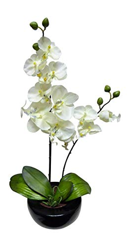 UK-Gardens Large White Orchid Artificial Potted Plant 46cm Tall With Silk Flowers In a Ceramic Round Black Planter Pot - House Office or Indoor Use - Stunning Houseplant