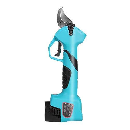 VIY Tijeras de Podar Eléctricas a Batería 2 Piezas de Baterías de Litio Recargables 2Ah 25 MM (1 Pulgadas), 6-8 Horas de Trabajo (Azul)