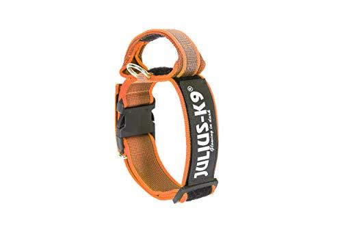 Julius-K9 200HA-K-OR-2015 Color & Gray Halsband mit Haltegriff, Sicherheitsverschluss und Logo, 50 mm (49-70 cm), Orange-Grau