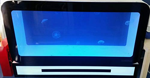 Somnium 360 Quallen-Aquarium, sehr modernes Quallen-Aquarium.
